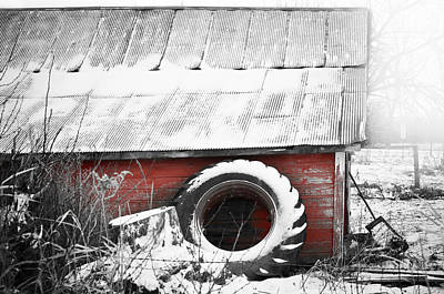 Farm In Woods Photograph - What's He Building In There by Matthew Blum