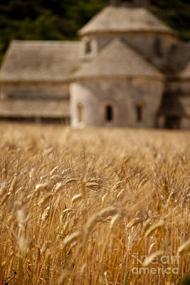 Wheat At The Abbaye Print by Brian Jannsen