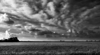Photograph - Wheat Black And White by Eric Benjamin