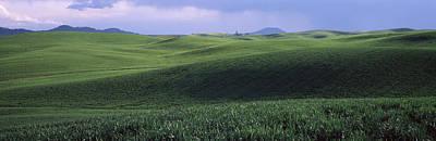 Wheat Field On A Rolling Landscape Art Print