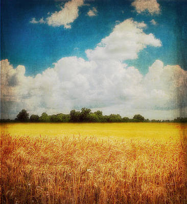 Photograph - Wheat Field Textured Photo Art by Ann Powell
