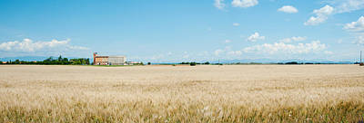 Provence Photograph - Wheat Field With Grain Elevator by Panoramic Images