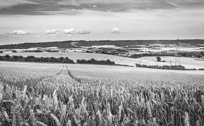 Photograph - Wheat Fields by Gary Gillette