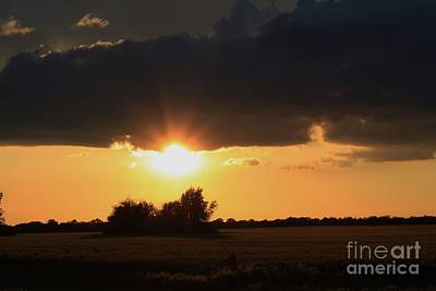 Photograph - Wheatfield Sunset With Cloud's And Tree's by Robert D  Brozek