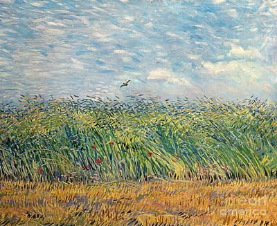 Dutch Painting - Wheatfield With Lark by Vincent van Gogh