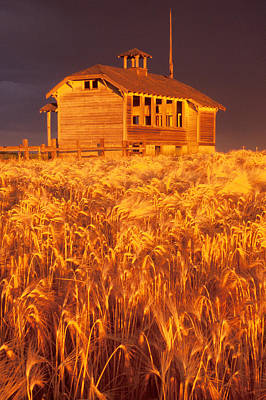 Photograph - Wheatfields And Schoolhouse by Judi Baker