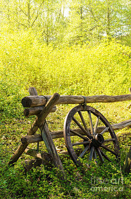 Pasture Scenes Photograph - Wheel On Fence by Carlos Caetano