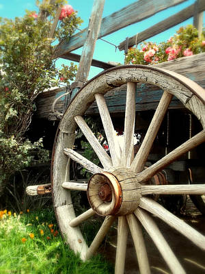 Photograph - Wheels And Blooms by Glenn McCarthy Art and Photography
