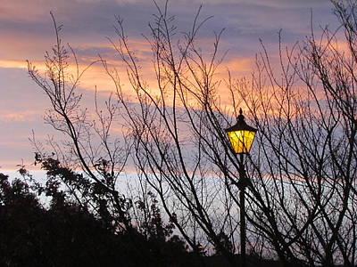 Photograph - When Night Falls by Joyce Woodhouse