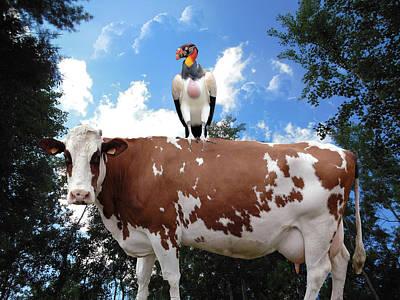 Buzzard Digital Art - When The Cows Come Home by Robert Orinski
