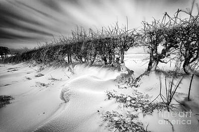 Drifting Snow Photograph - When The Wind Blows by John Farnan