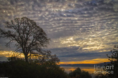 Clearlake Photograph - When Tomorrow Comes by Mitch Shindelbower