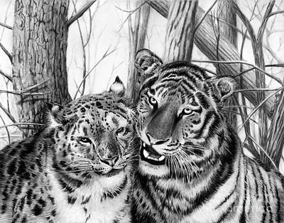 Large Cats Drawing - When Two Hearts Collide by Peter Piatt