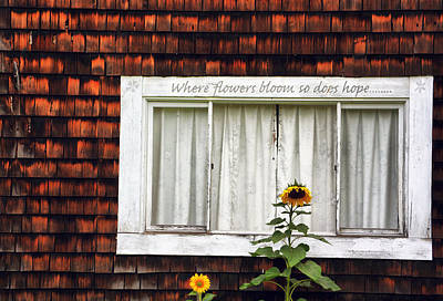 Photograph - Where Flowers Bloom by Emily Stauring