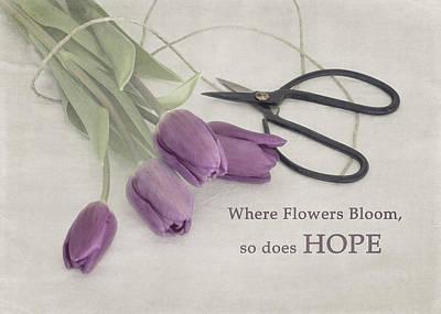 Photograph - Where Flowers Bloom by Kim Hojnacki