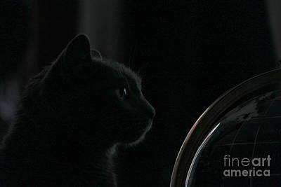 Photograph - Where On Earth Am I Tonight by Jennifer E Doll