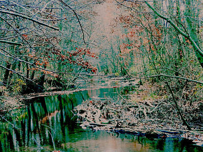 Mixed Media - Where The Creek Runs by Connie Dye
