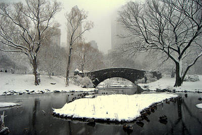 Where The  Ducks Go When It Gets All Frozen Over Art Print