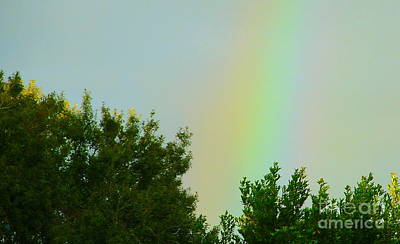 Photograph - Where's My Pot Of Gold? by Lew Davis