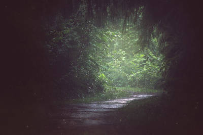 Webster Park Photograph - Wherever The Path May Lead by Carrie Ann Grippo-Pike