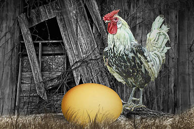 Laid -back Art Photograph - Which Came First The Chicken Or The Egg by Randall Nyhof