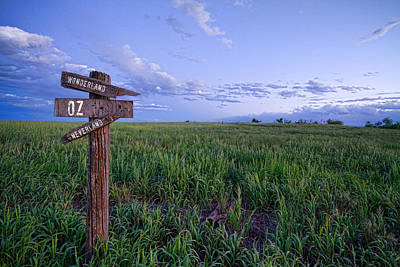 Farming Photograph - Which Way To Go by James BO  Insogna