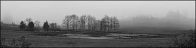Whidbey Island Meadow In Fog Art Print