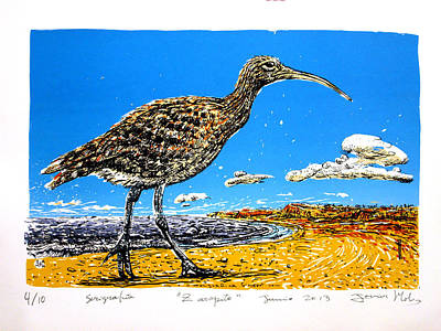 Clounds Mixed Media - Whimbrel by Javier Molina