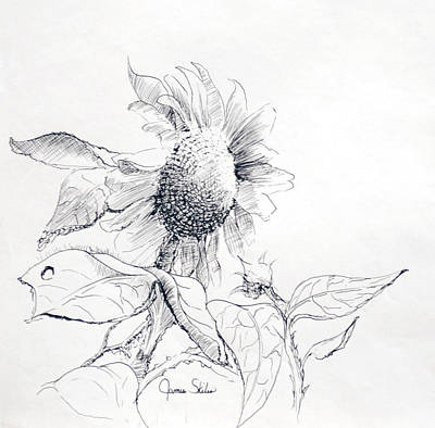 Drawing - Whimsical Sunflower  by James Skiles