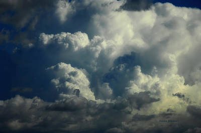 Photograph - Whipped Clouds by Donna Blackhall