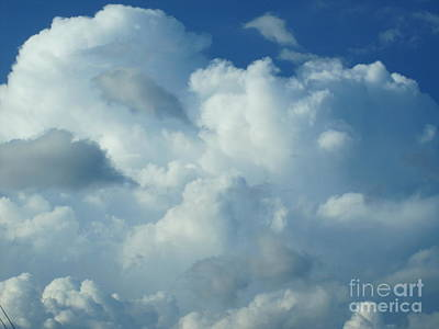 Photograph - Whipped Clouds by Tara  Shalton