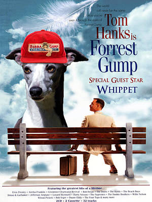 Painting - Whippet Art - Forrest Gump Movie Poster by Sandra Sij