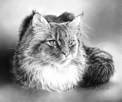 Wall Art - Drawing - Those Whiskers by Laurie Musser