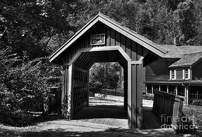 Photograph - Whisky Creek Bw by Mel Steinhauer