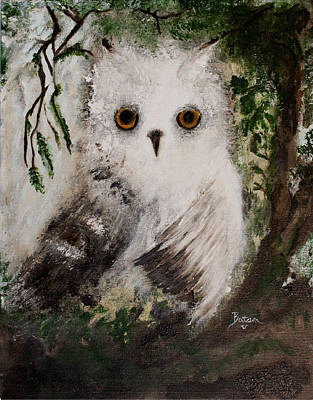 Painting - Whisper The Snowy Owl by Barbie Batson