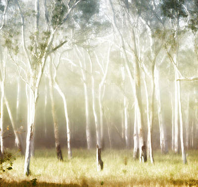 Mist Digital Art - Whisper The Trees by Holly Kempe
