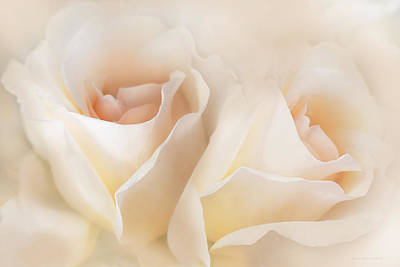 Photograph - Whispers Of Peaches And Cream Roses by Jennie Marie Schell