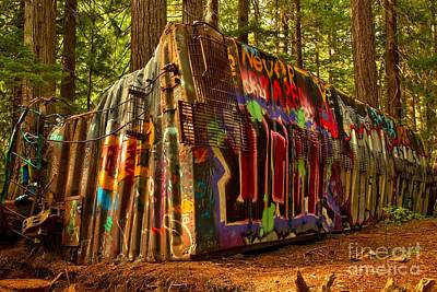 Photograph - Whistler Train Derailment Box Car by Adam Jewell