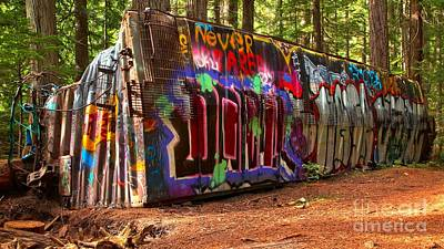 Photograph - Whistler Train Wreck Graffiti by Adam Jewell