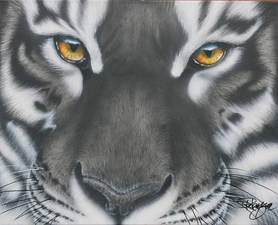 Painting - White And Black Tiger by Darren Robinson