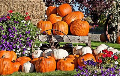 Photograph - White And Orange Pumpkin Fall Still Life by Valerie Garner