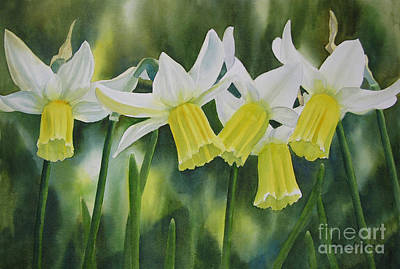 Daffodils Painting - White And Yellow Daffodils by Sharon Freeman