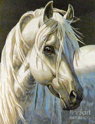 Painting - white Arabian by Audrey Van Tassell