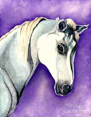 Painting - White Arabian Horse  by Janine Riley