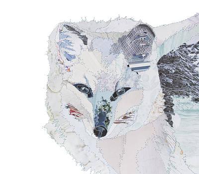 Arctic Fox Painting - White - Arctic Fox by Catherine Kleeli