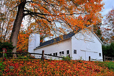 White Barn And Silo Art Print by Thomas Schoeller