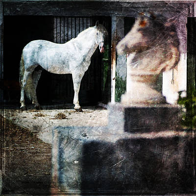 Photograph - White Horse In Front Of White Statue Of A Horse - White Beauty by Pedro Cardona