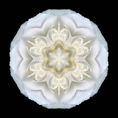 White Begonia II Flower Mandala Art Print