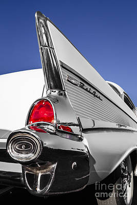 Photograph - White Belair by Dennis Hedberg