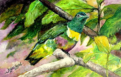Painting - White-bibbed Fruit Dove  by Jason Sentuf
